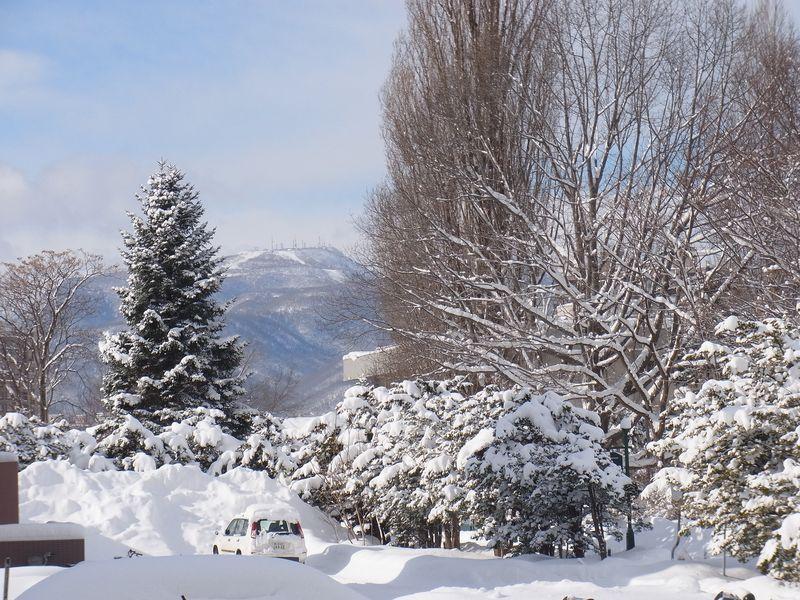 ついに東区は積雪1メートル越え_c0025115_18231690.jpg