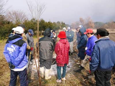 栗の木剪定の研修会に参加しました_a0254656_16254448.jpg