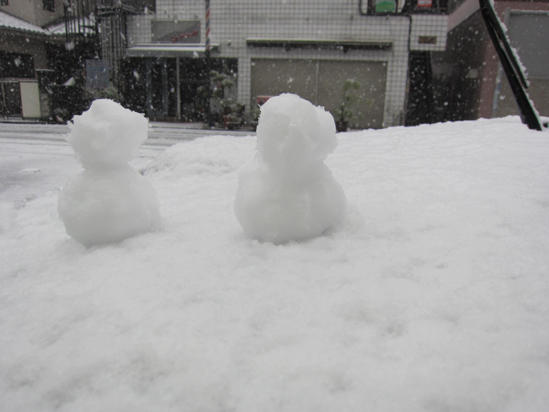 雪だ(^O^)_b0219170_11554730.jpg