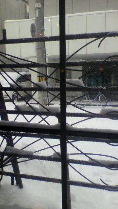雪に埋もれて_d0268070_13524566.jpg