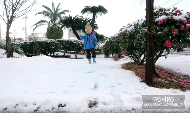 雪国ルック_e0199585_18571573.jpg