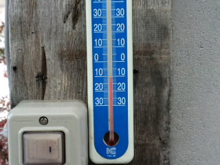 氷点下11℃の朝_d0027486_8481311.jpg