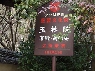 京都の初釜_a0233896_15491578.jpg