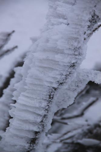 霧氷の高見山  1248m 奈良県_d0055236_11271552.jpg