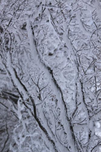 霧氷の高見山  1248m 奈良県_d0055236_11271595.jpg
