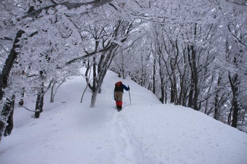 霧氷の高見山  1248m 奈良県_d0055236_11274359.jpg