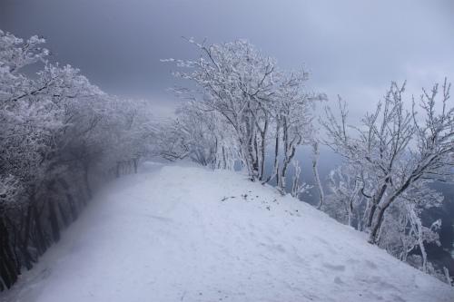 霧氷の高見山  1248m 奈良県_d0055236_11281082.jpg