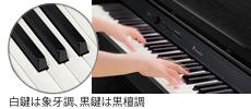 鍵盤めぐり その2_f0182936_2257326.jpg