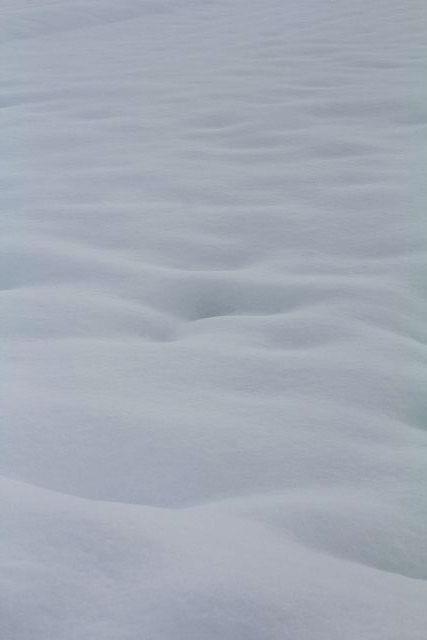 雪 干し大根 ワイングラス_b0132338_2034443.jpg