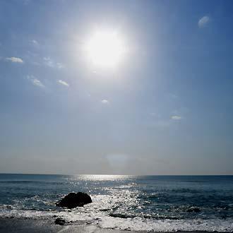 打上げ貝の季節_c0019338_16363975.jpg