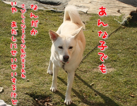 f0195543_0142489.jpg