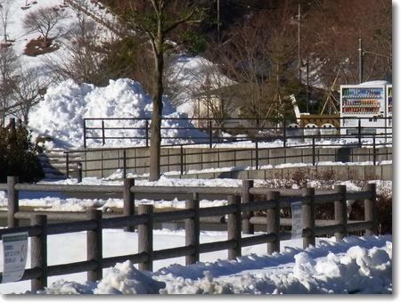 雪景色の宮ヶ瀬 2013.01.19_c0147448_2045578.jpg