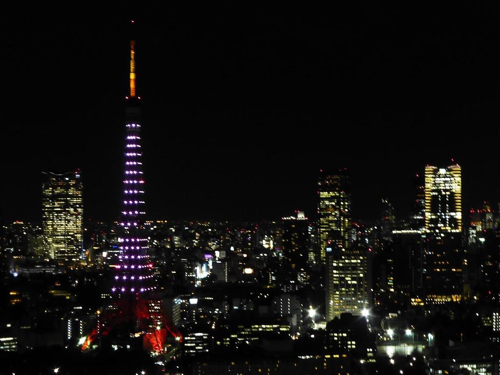 富士山と東京タワー_c0100865_6194680.jpg