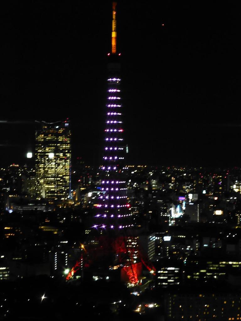 富士山と東京タワー_c0100865_620297.jpg