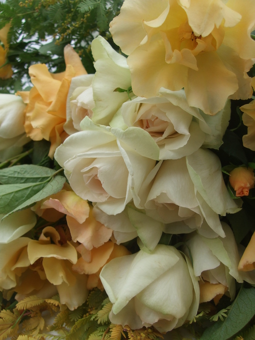オークリーフ(お見送りの花たち)_f0049672_17103821.jpg
