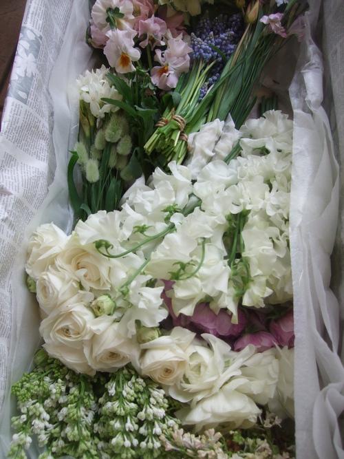 オークリーフ(お見送りの花たち)_f0049672_17122695.jpg
