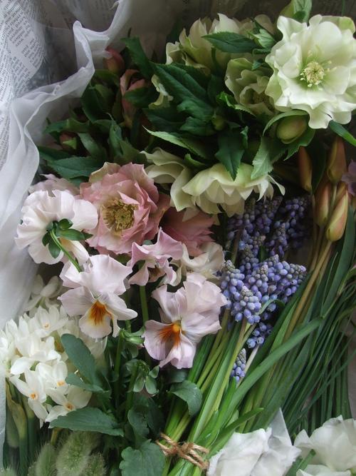 オークリーフ(お見送りの花たち)_f0049672_1712453.jpg