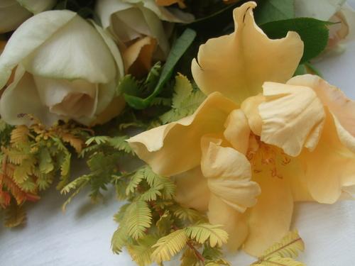 オークリーフ(お見送りの花たち)_f0049672_1782495.jpg