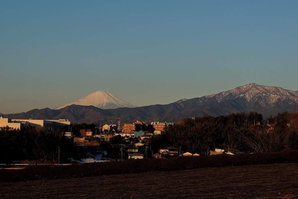氷点下8度/か~~わいいモズ/今朝のアリスイ/富士山_b0024798_13362100.jpg
