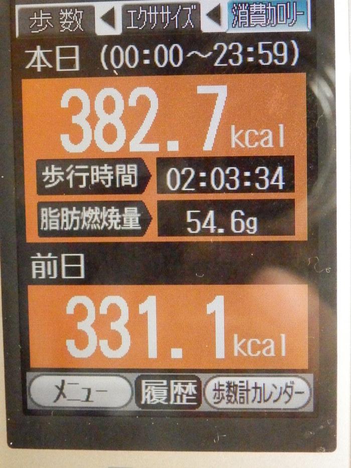 f0219710_78251.jpg