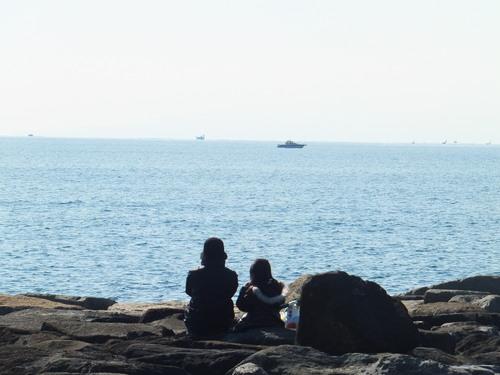 小春日和....海岸散歩!_b0137932_1355364.jpg
