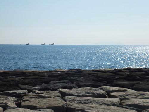 小春日和....海岸散歩!_b0137932_13593012.jpg