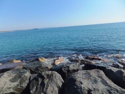 小春日和....海岸散歩!_b0137932_14125779.jpg