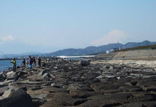 小春日和....海岸散歩!_b0137932_14152857.jpg