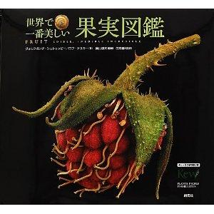 世界で一番美しい果実図鑑 、 クリスマスの文化史_e0253932_565823.jpg