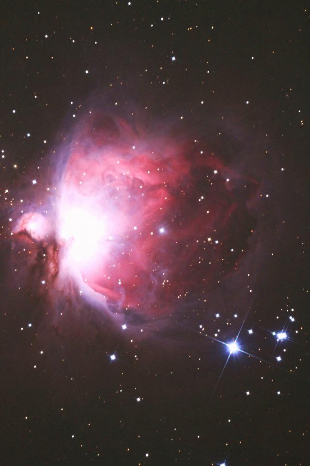 夢中で星を追いかけます・・・_b0100253_1755273.jpg