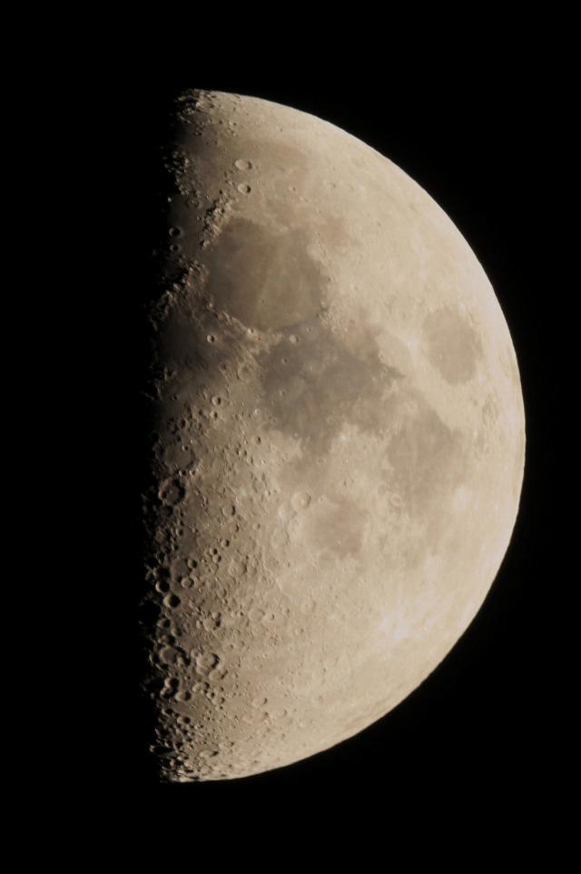 夢中で星を追いかけます・・・_b0100253_1784544.jpg