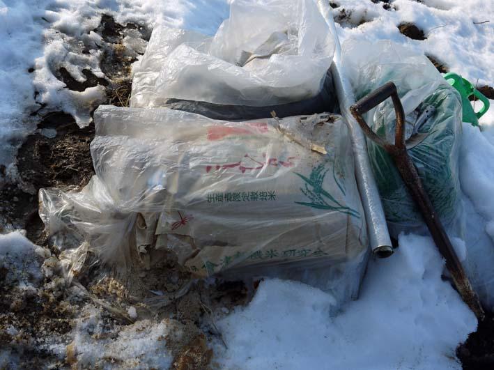 残雪の農園から聖護院ダイコンとネギ収穫(2013・1・20)_c0014967_1855148.jpg