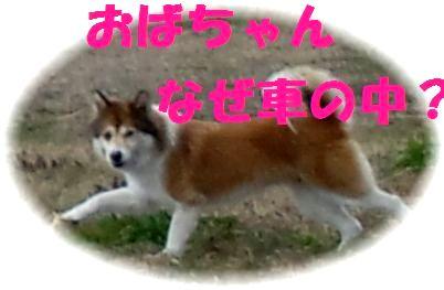 c0025171_20193310.jpg