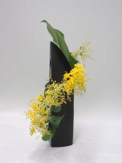 春を呼ぶ黄色い花_c0165824_2220518.jpg