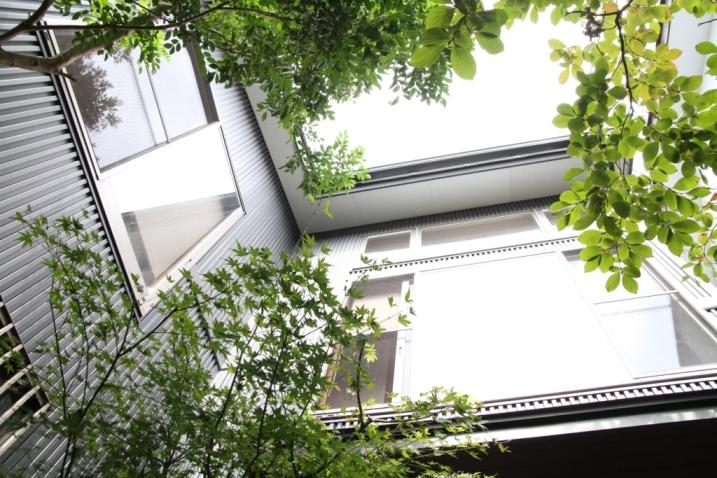 雑木の庭☆_c0152341_145186.jpg