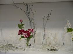 ROBINIER_a0252678_1125620.jpg
