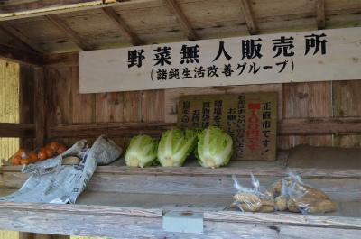 諸鈍の「野菜無人販売所」_e0028387_23154873.jpg
