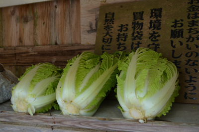 諸鈍の「野菜無人販売所」_e0028387_2316236.jpg