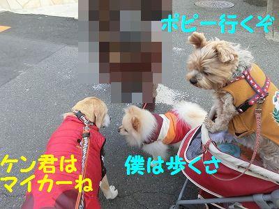 売り切れデシタ_e0222588_17342544.jpg