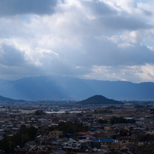 奈良の大神神社とサカキの苗木_a0292194_233447.jpg