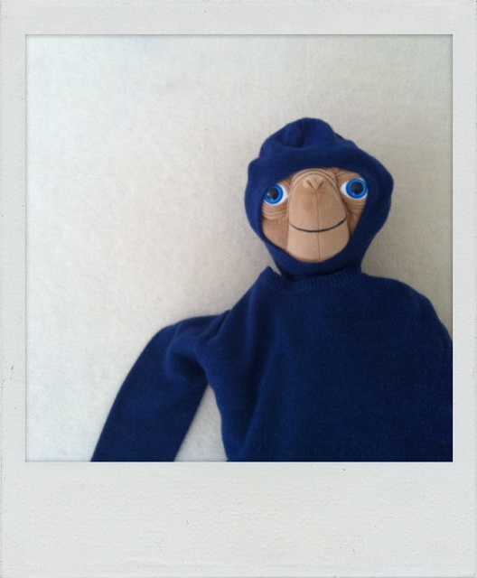 SUNSEA cashmere sweater (is ultra rare !...; )_f0170995_1642636.jpg