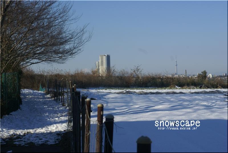 雪景色_f0156117_7541713.jpg