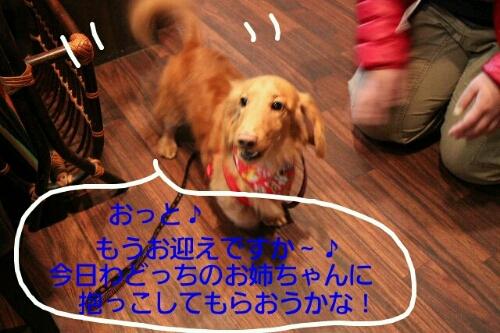 b0130018_23235087.jpg