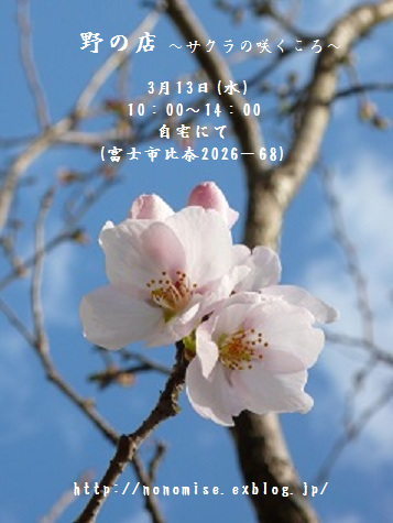 b0264320_8532411.png