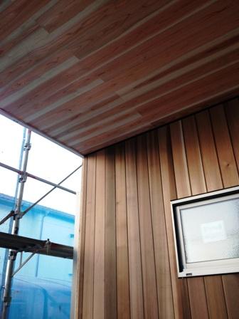 そよ風+太陽光発電「いただきハウス」_f0170331_15412082.jpg