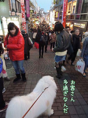 日曜おじ散歩_c0062832_7304030.jpg