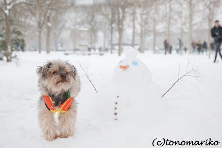 フランスの雪だるまの秘密…_c0024345_6424397.jpg