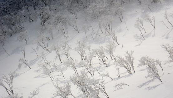 雪山講習会_e0111396_0474879.jpg
