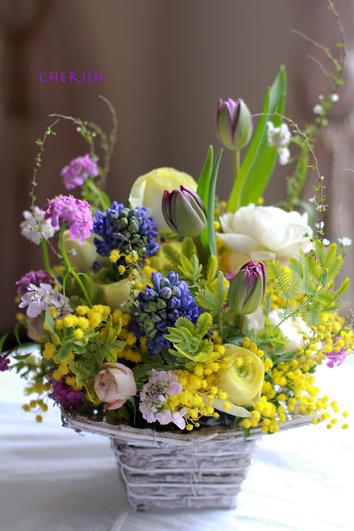 春の花畑_b0208604_14555294.jpg