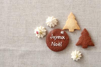 Noël gâteau 2012_d0232015_22572473.jpg